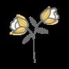פרח 8