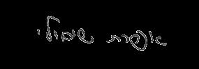 חתימה אפרת שיבולי